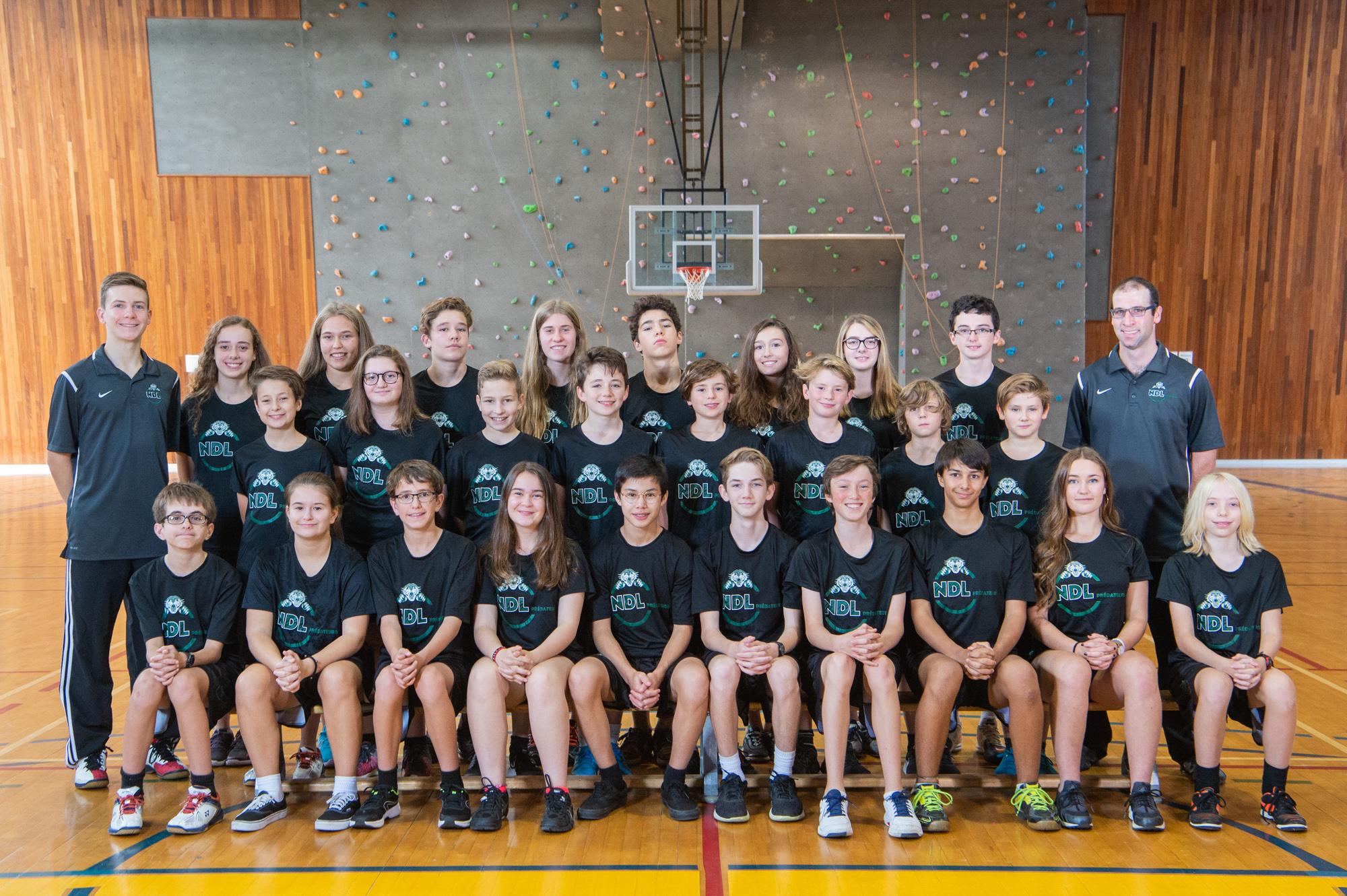 NDL Preds 2018-Badminton