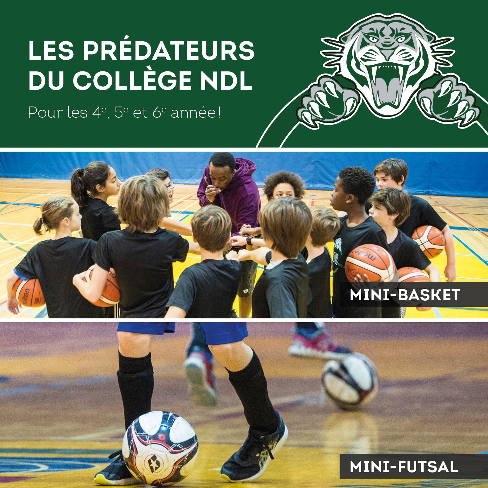 NDL Mini Preds automne 2019